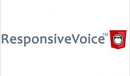 responsivevoice - плагин синтезатора речи для сайта.